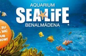 El mundo submarino de Sea Life Benalmádena 1