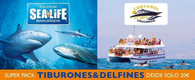 SEA LIFE Benalmádena - Tiburones + Delfines