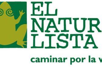 Ofertas zapatos El Naturalista 4