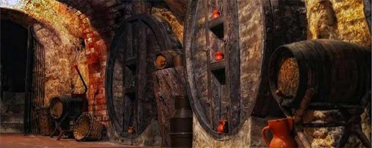 Descubre las bodegas medievales de Ribera del Duero