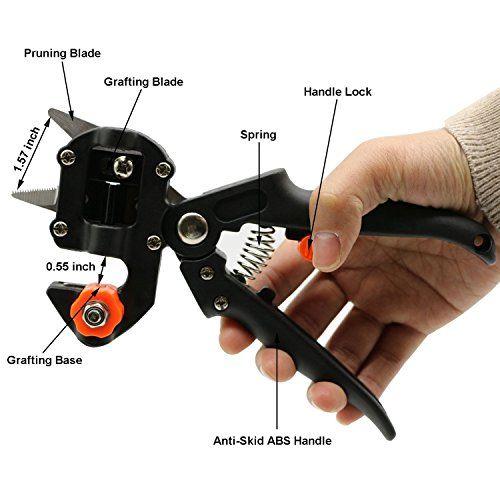Profesional de corte para podar y herramienta injerto, tijera injertar
