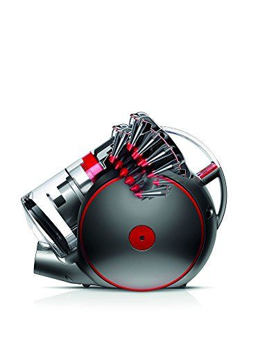 Dyson Cinetic Big Ball Animalpro 2 Aspiradora de Trineo sin